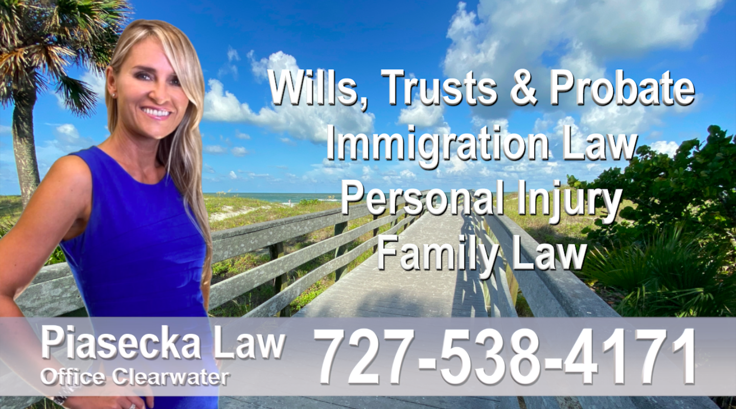 Polish Attorney Wills Trusts Immigration Family Law Personal Injury Real Estate